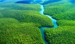 National geographic - Amazon Forest - BBC wildlife animal documentary National picture  National picture